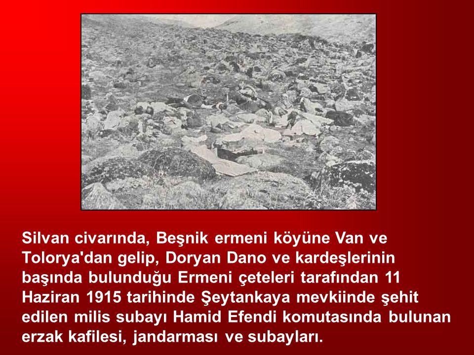 Silvan civarında, Beşnik ermeni köyüne Van ve Tolorya'dan gelip, Doryan Dano ve kardeşlerinin başında bulunduğu Ermeni çeteleri tarafından 11 Haziran