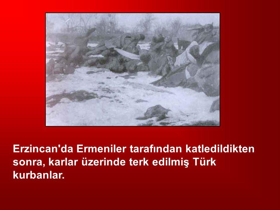 Erzincan'da Ermeniler tarafından katledildikten sonra, karlar üzerinde terk edilmiş Türk kurbanlar.