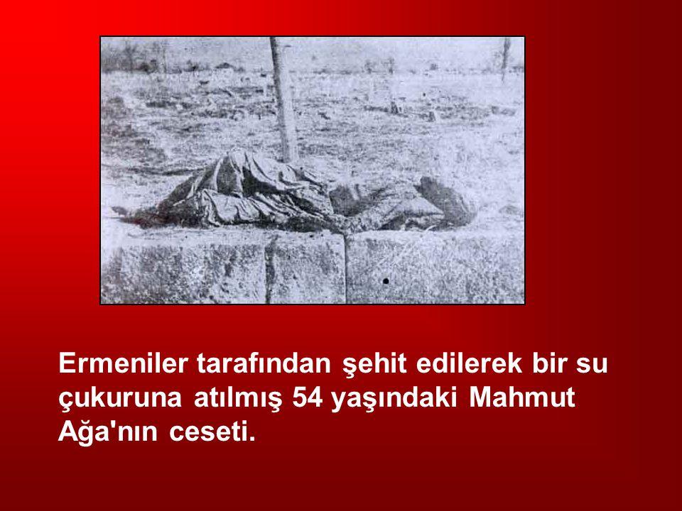 Ermeniler tarafından şehit edilerek bir su çukuruna atılmış 54 yaşındaki Mahmut Ağa'nın ceseti.