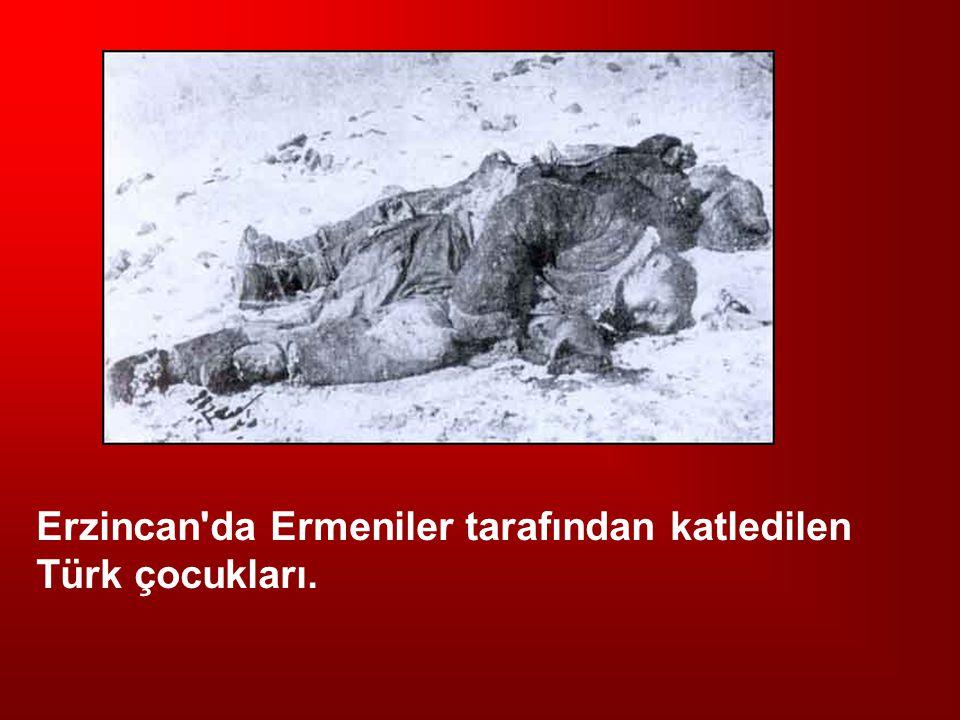 Erzincan'da Ermeniler tarafından katledilen Türk çocukları.