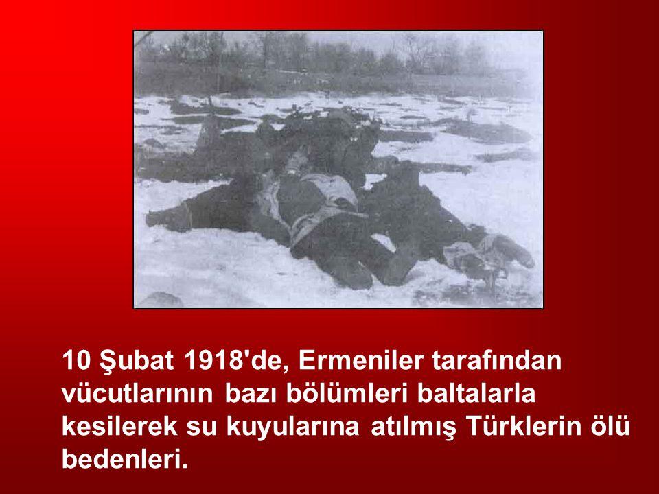 10 Şubat 1918'de, Ermeniler tarafından vücutlarının bazı bölümleri baltalarla kesilerek su kuyularına atılmış Türklerin ölü bedenleri.