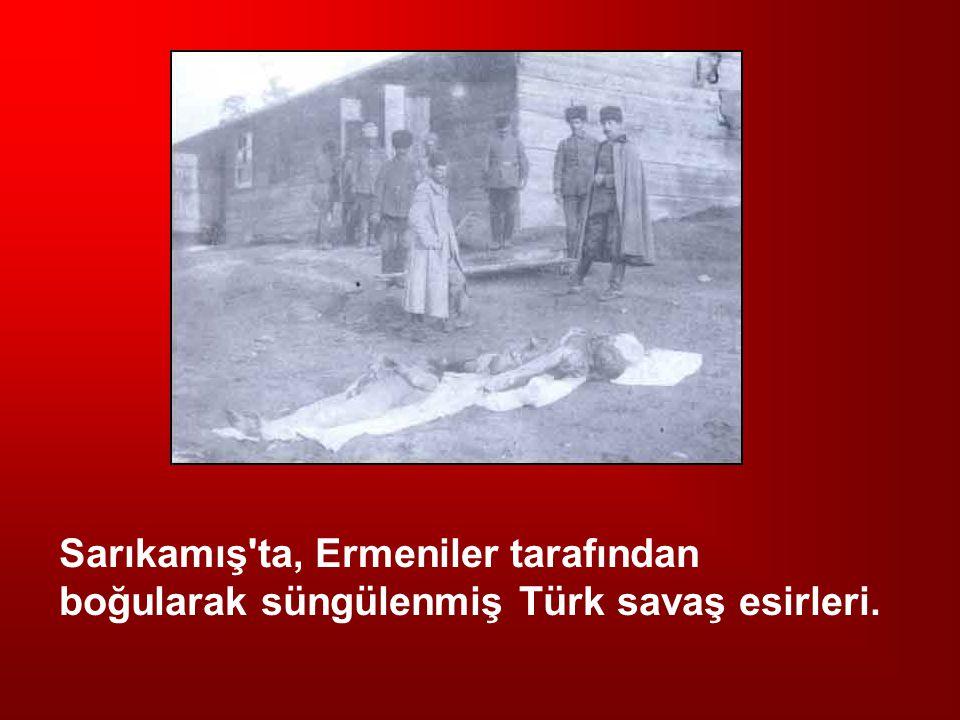 Sarıkamış'ta, Ermeniler tarafından boğularak süngülenmiş Türk savaş esirleri.