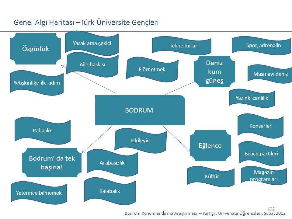 102 Genel Algı Haritası –Türk Üniversite Gençleri BODRUM Konserler Beach partileri Deniz kum güneş Masmavi deniz Magazin programları Yazınki canlılık