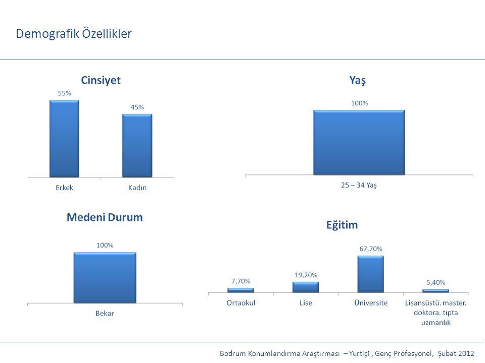 Demografik Özellikler Bodrum Konumlandırma Araştırması – Yurtiçi, Genç Profesyonel, Şubat 2012