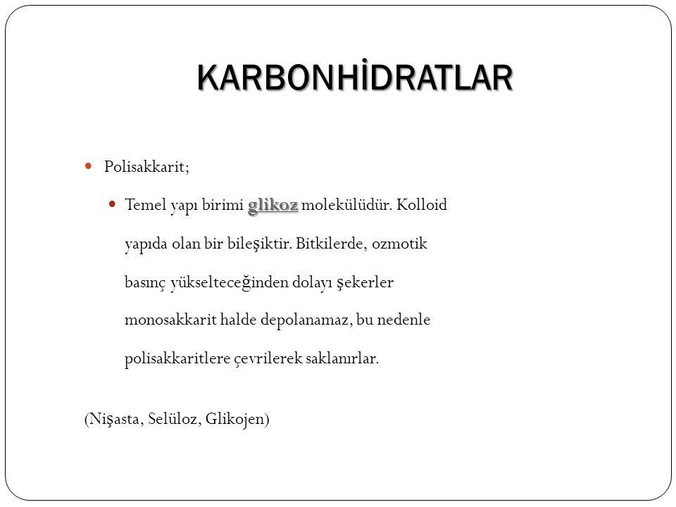 KARBONHİDRATLAR Polisakkarit; glikoz Temel yapı birimi glikoz molekülüdür. Kolloid yapıda olan bir bile ş iktir. Bitkilerde, ozmotik basınç yükseltece