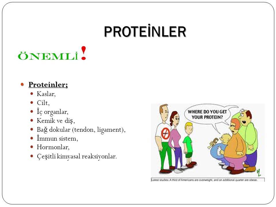 PROTEİNLER Proteinler; Proteinler; Kaslar, Cilt, İ ç organlar, Kemik ve di ş, Ba ğ dokular (tendon, ligament), İ mmun sistem, Hormonlar, Çe ş itli kim