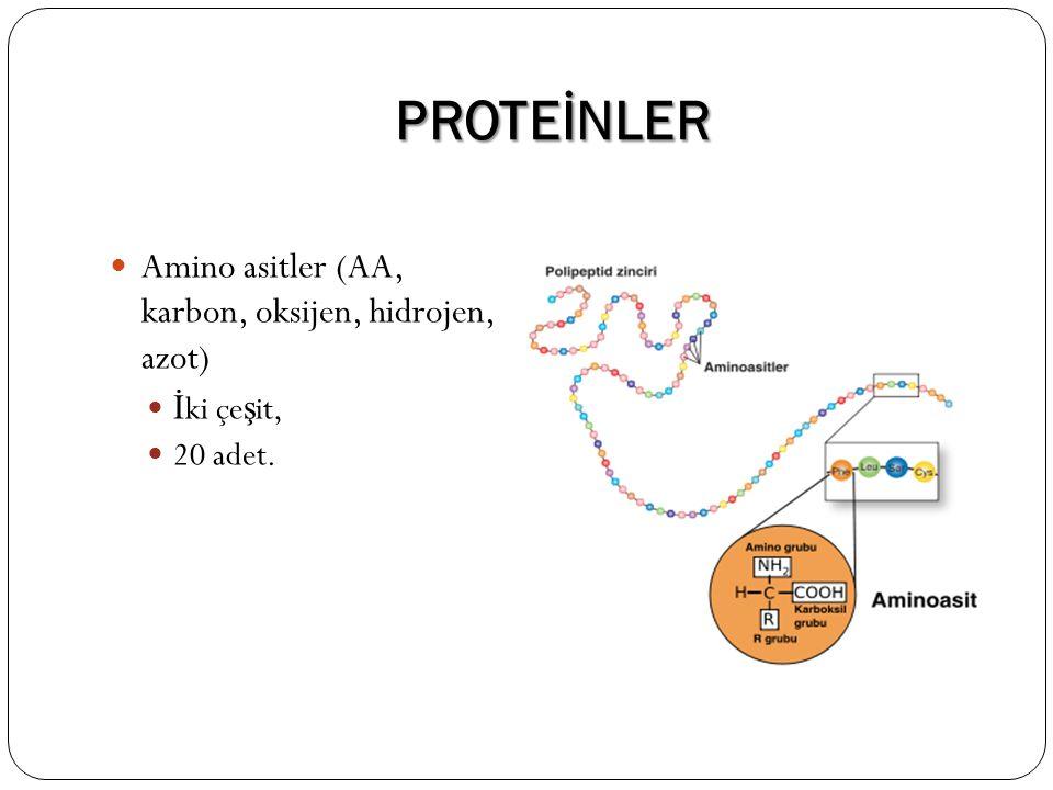 PROTEİNLER Amino asitler (AA, karbon, oksijen, hidrojen, azot) İ ki çe ş it, 20 adet.