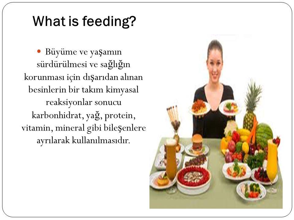 What is feeding? Büyüme ve ya ş amın sürdürülmesi ve sa ğ lı ğ ın korunması için dı ş arıdan alınan besinlerin bir takım kimyasal reaksiyonlar sonucu