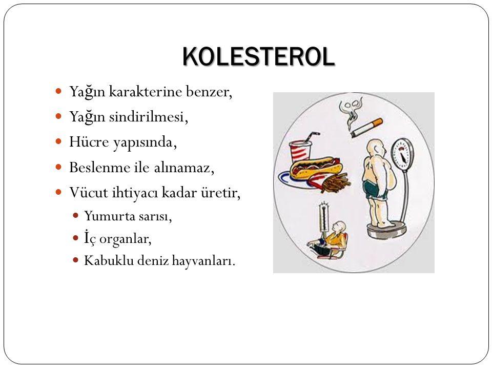 KOLESTEROL Ya ğ ın karakterine benzer, Ya ğ ın sindirilmesi, Hücre yapısında, Beslenme ile alınamaz, Vücut ihtiyacı kadar üretir, Yumurta sarısı, İ ç