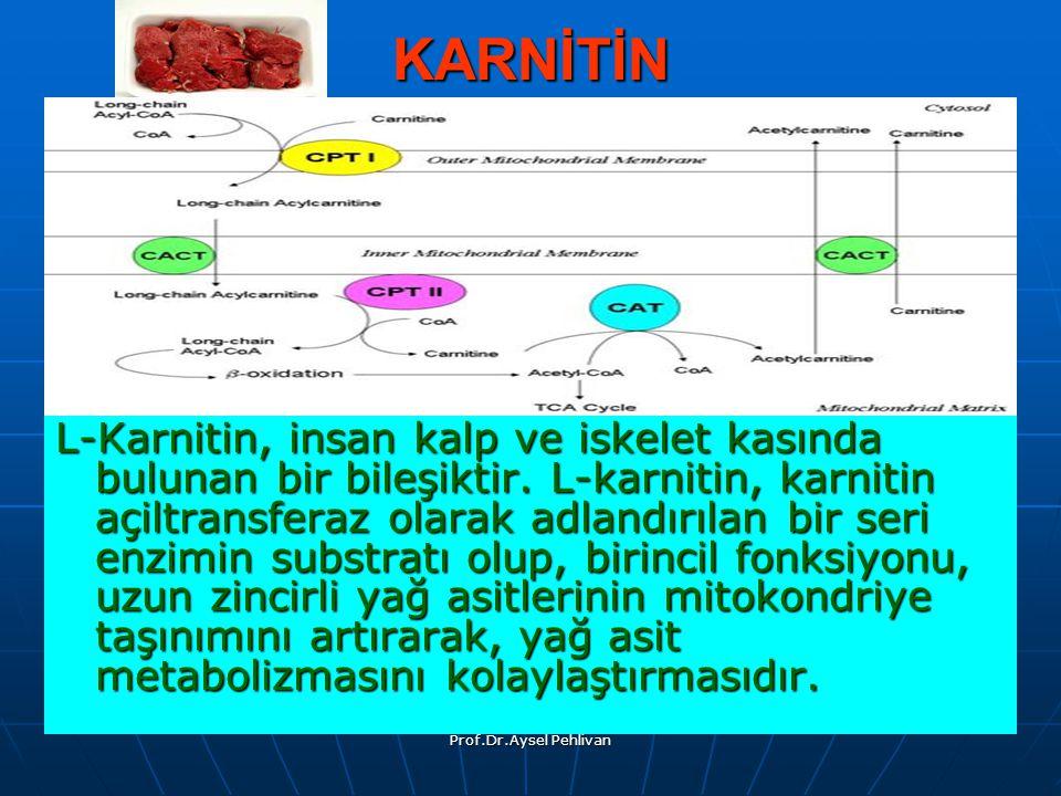 Prof.Dr.Aysel Pehlivan KARNİTİN L-Karnitin, insan kalp ve iskelet kasında bulunan bir bileşiktir.