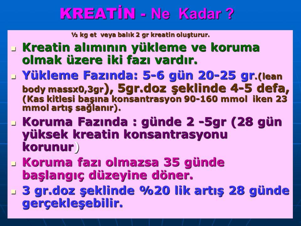 Prof.Dr.Aysel Pehlivan KREATİN - Ne Kadar .½ kg et veya balık 2 gr kreatin oluşturur.