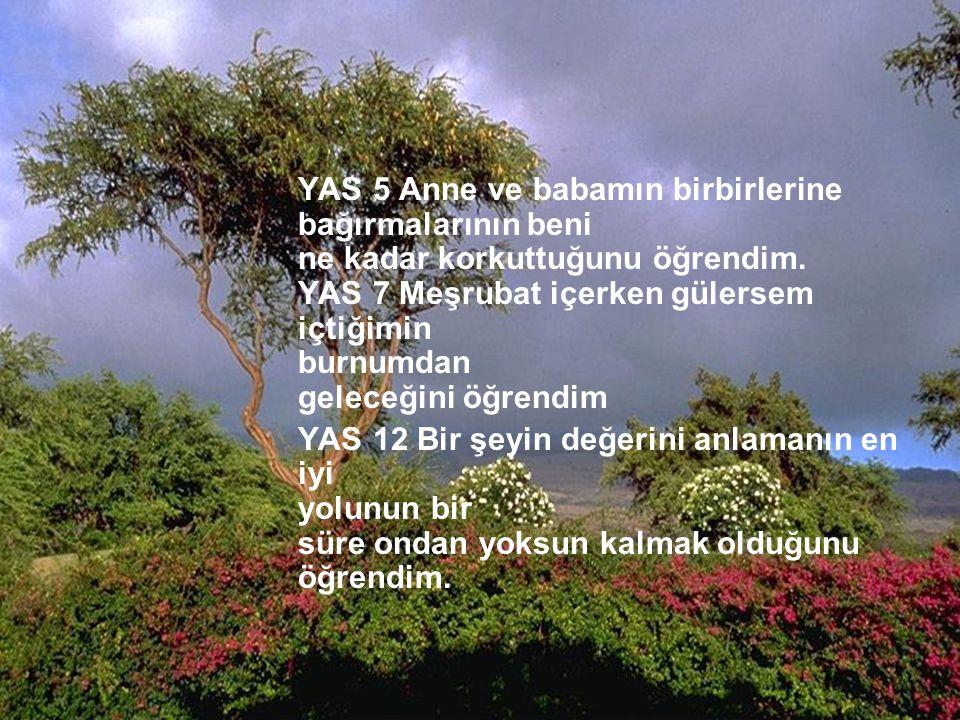 http://turkgazeteleri.cjb.net 3 YAŞ 13 Annemle babamın el ele tutuşmalarının ve öpüşmelerinin beni daima mutlu ettiğini öğrendim.