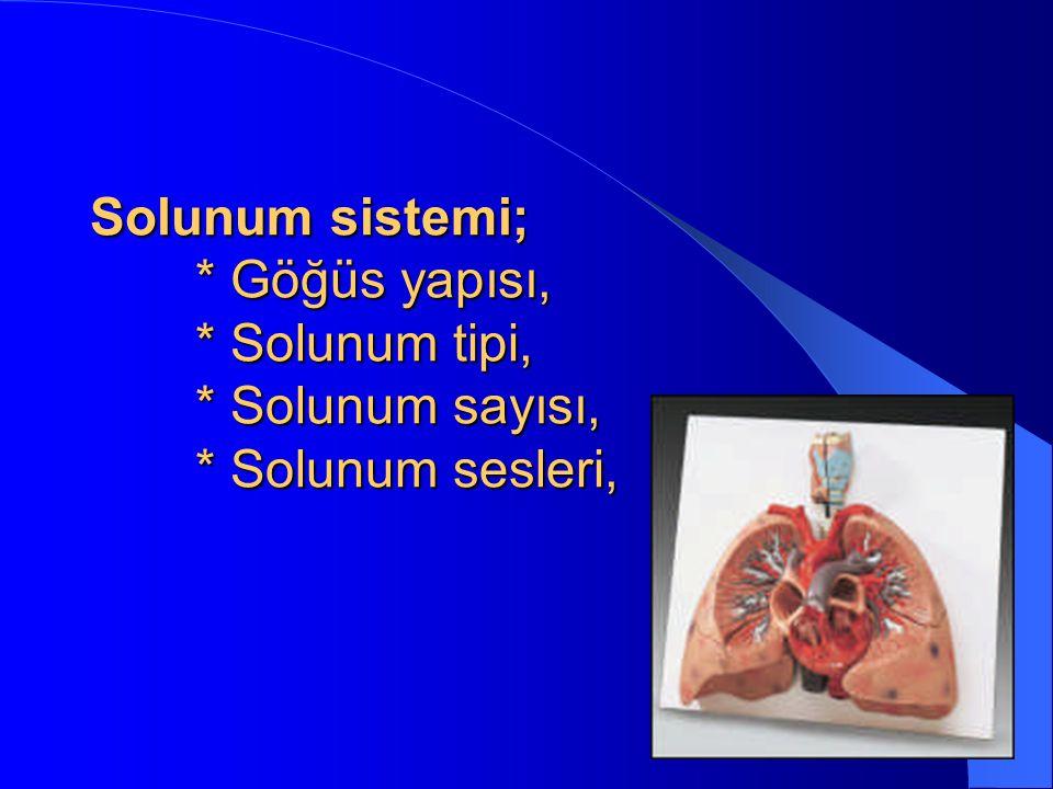 Solunum sistemi; * Göğüs yapısı, * Solunum tipi, * Solunum sayısı, * Solunum sesleri,