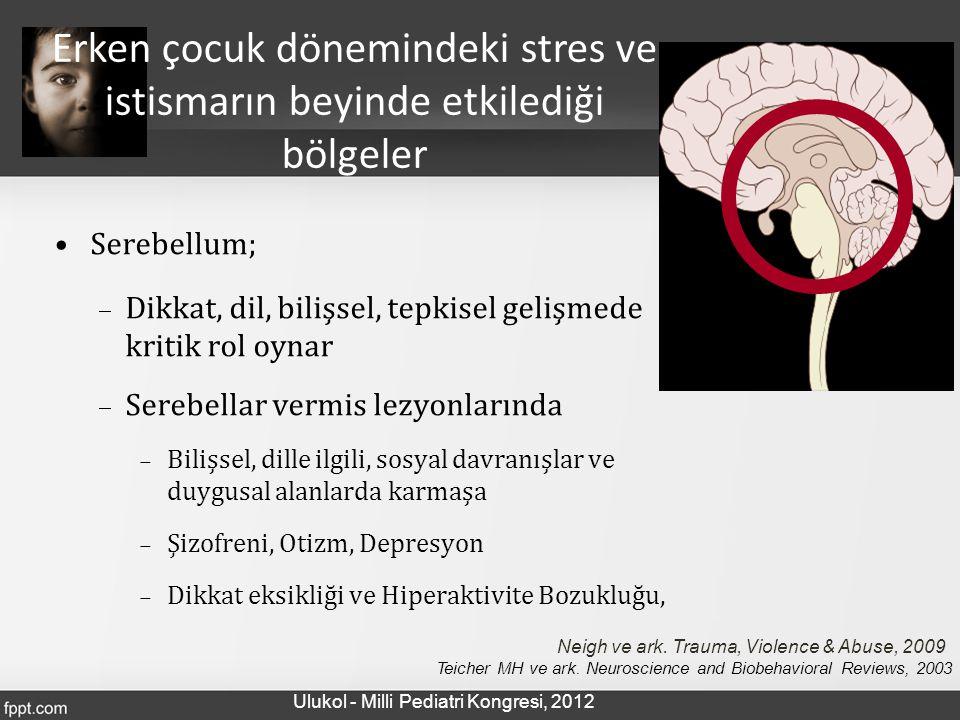 Serebellum;  Dikkat, dil, bilişsel, tepkisel gelişmede kritik rol oynar  Serebellar vermis lezyonlarında  Bilişsel, dille ilgili, sosyal davranışla