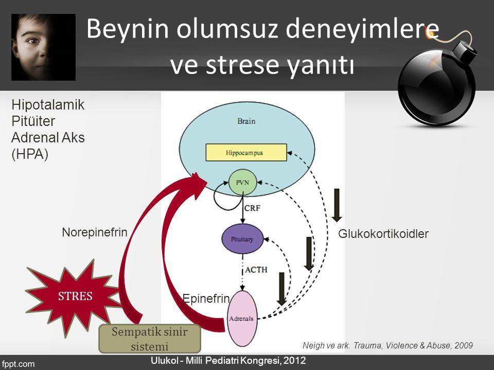 Beynin olumsuz deneyimlere ve strese yanıtı Hipotalamik Pitüiter Adrenal Aks (HPA) Neigh ve ark. Trauma, Violence & Abuse, 2009 STRES Norepinefrin Epi