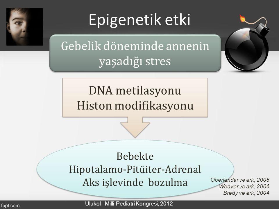 Epigenetik etki Gebelik döneminde annenin yaşadığı stres DNA metilasyonu Histon modifikasyonu DNA metilasyonu Histon modifikasyonu Bebekte Hipotalamo-