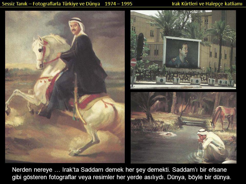 Sessiz Tanık – Fotograflarla Türkiye ve Dünya 1974 – 1995 Irak Kürtleri ve Halepçe katliamı Nerden nereye … Irak'ta Saddam demek her şey demekti. Sadd