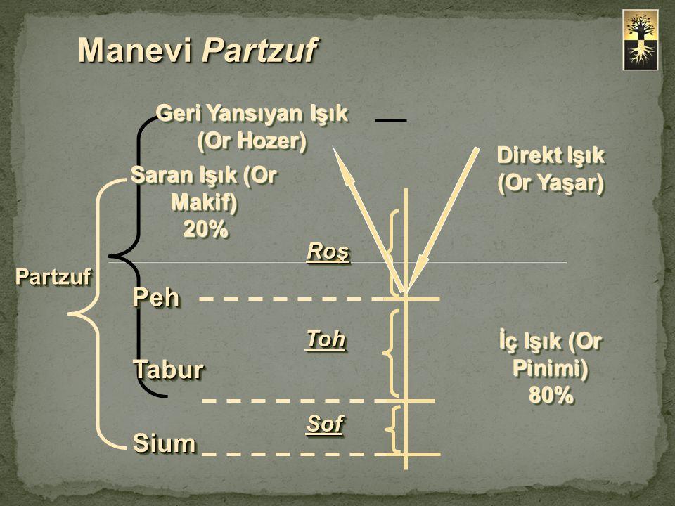 Roş TohToh SofSof PehPeh TaburTabur SiumSium Or Hozer 80% Or Makif 100% 100% Or Yaşar 100% 100% Or Pinimi 20% 20% Manevi Partzuf PartzufPartzuf