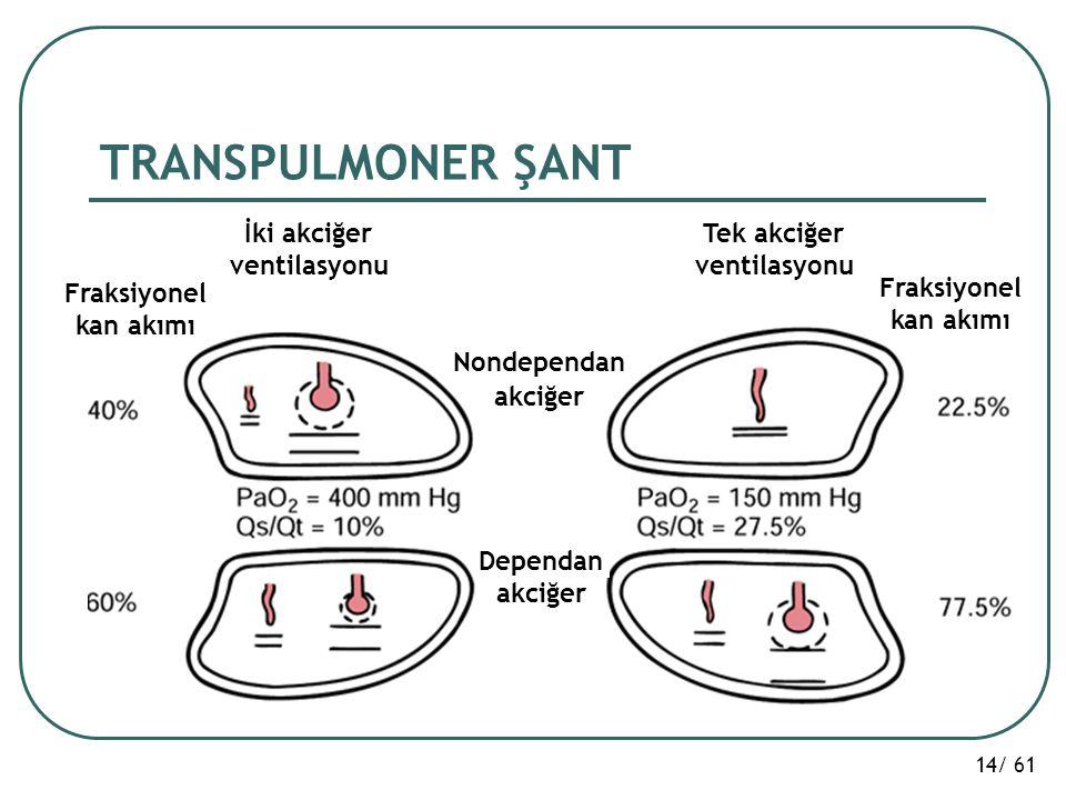 14/ 61 TRANSPULMONER ŞANT İki akciğer ventilasyonu Tek akciğer ventilasyonu Fraksiyonel kan akımı Fraksiyonel kan akımı Nondependan akciğer Dependan a