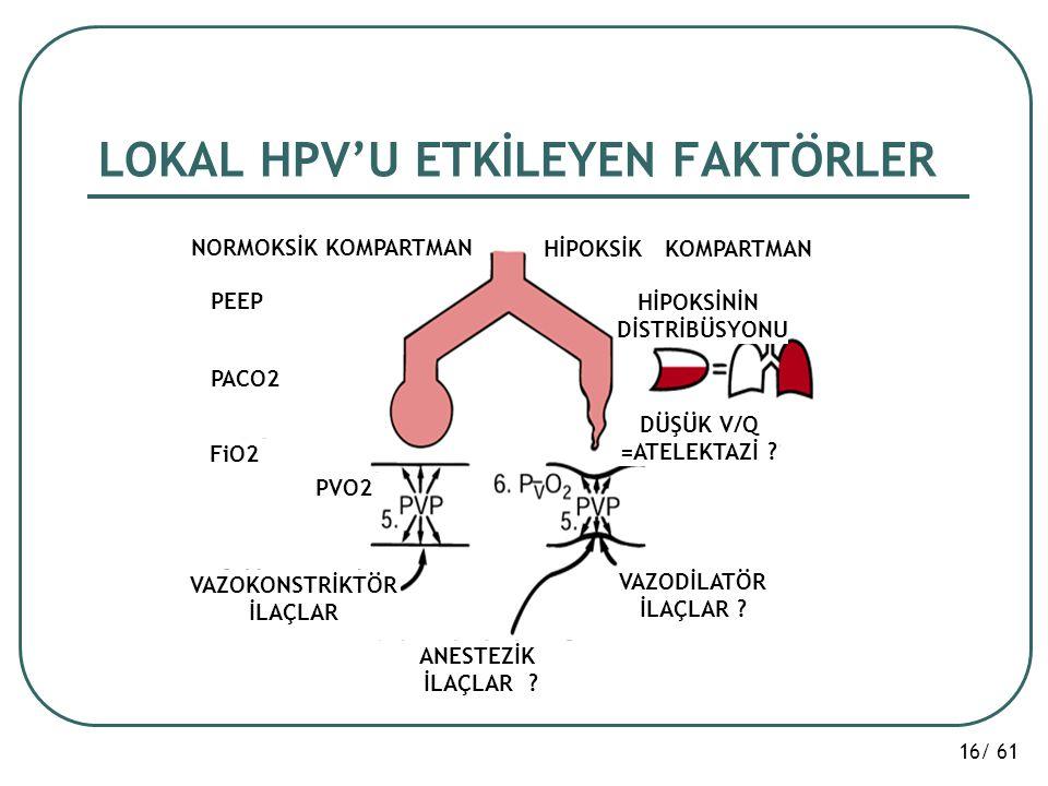16/ 61 LOKAL HPV'U ETKİLEYEN FAKTÖRLER NORMOKSİK KOMPARTMAN HİPOKSİK KOMPARTMAN PEEP PACO2 FiO2 PVO2 VAZOKONSTRİKTÖR İLAÇLAR VAZODİLATÖR İLAÇLAR ? ANE