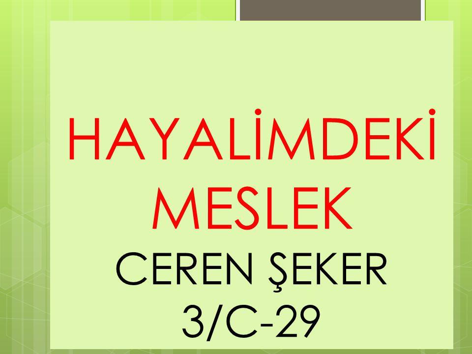 HAYALİMDEKİ MESLEK CEREN ŞEKER 3/C-29