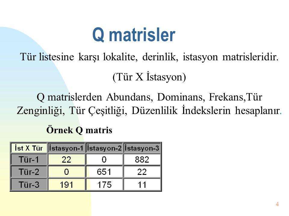 3 İndeks ve matrisler Terimlerin sayısal ifadeler haline getirilmesini sağlar. Verilerin sınırlı (limitli) rakamlara dönüştür. Çalışmaların güvenilirl