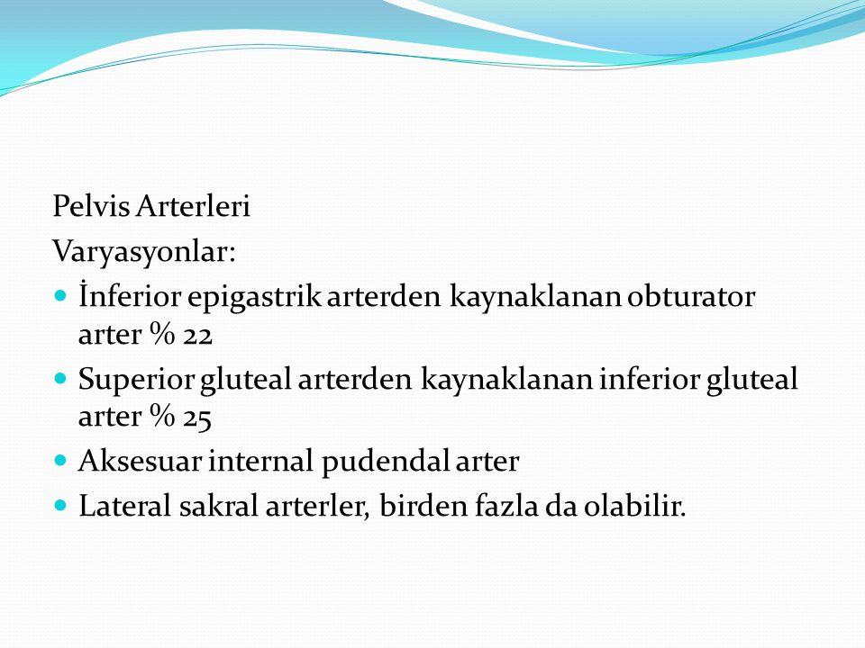 Pelvis Arterleri Varyasyonlar: İnferior epigastrik arterden kaynaklanan obturator arter % 22 Superior gluteal arterden kaynaklanan inferior gluteal ar