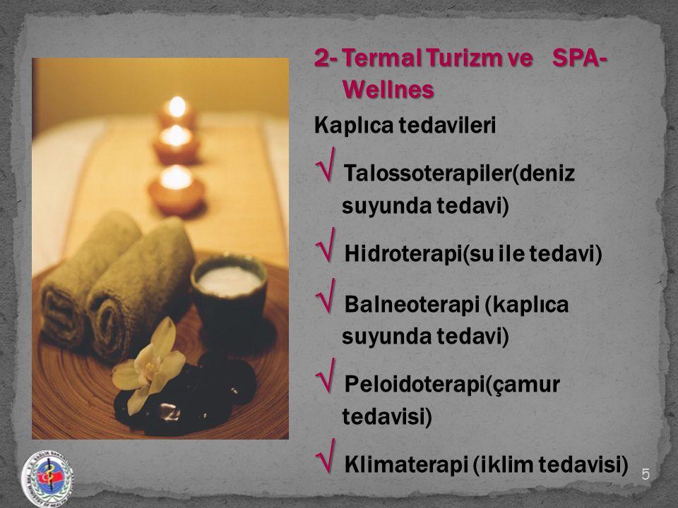 2- Termal Turizm ve SPA- Wellnes Kaplıca tedavileri √ √ Talossoterapiler(deniz suyunda tedavi) √ √ Hidroterapi(su ile tedavi) √ √ Balneoterapi (kaplıc