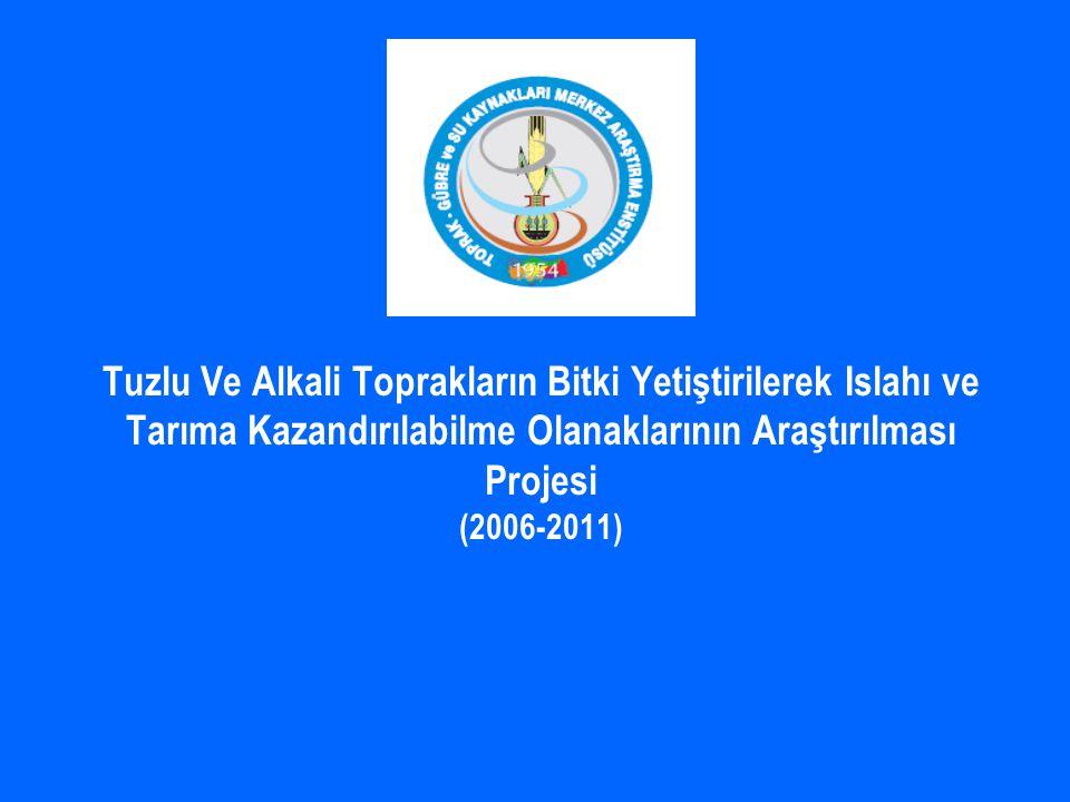 Tuzlu Ve Alkali Toprakların Bitki Yetiştirilerek Islahı ve Tarıma Kazandırılabilme Olanaklarının Araştırılması Projesi (2006-2011)