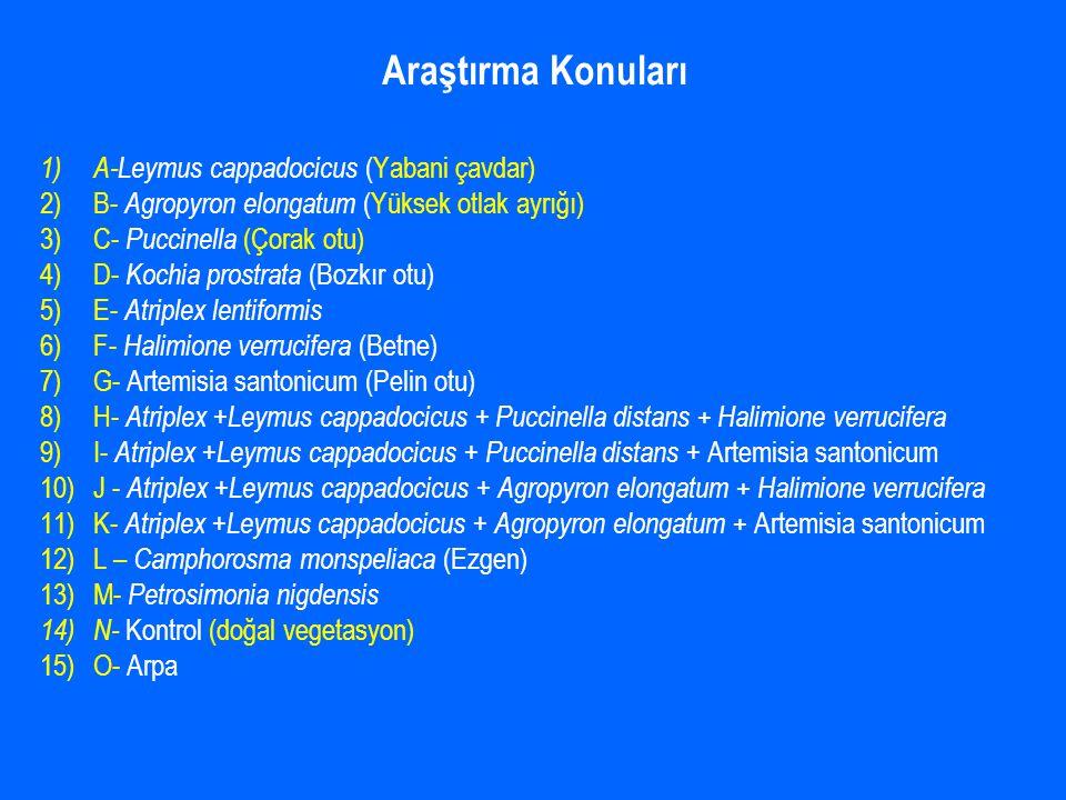 Araştırma Konuları 1) A-Leymus cappadocicus (Yabani çavdar) 2)B- Agropyron elongatum (Yüksek otlak ayrığı) 3)C- Puccinella (Çorak otu) 4)D- Kochia prostrata (Bozkır otu) 5)E- Atriplex lentiformis 6)F- Halimione verrucifera (Betne) 7)G- Artemisia santonicum (Pelin otu) 8)H- Atriplex +Leymus cappadocicus + Puccinella distans + Halimione verrucifera 9)I- Atriplex +Leymus cappadocicus + Puccinella distans + Artemisia santonicum 10)J - Atriplex +Leymus cappadocicus + Agropyron elongatum + Halimione verrucifera 11)K- Atriplex +Leymus cappadocicus + Agropyron elongatum + Artemisia santonicum 12)L – Camphorosma monspeliaca (Ezgen) 13)M- Petrosimonia nigdensis 14) N- Kontrol (doğal vegetasyon) 15)O- Arpa