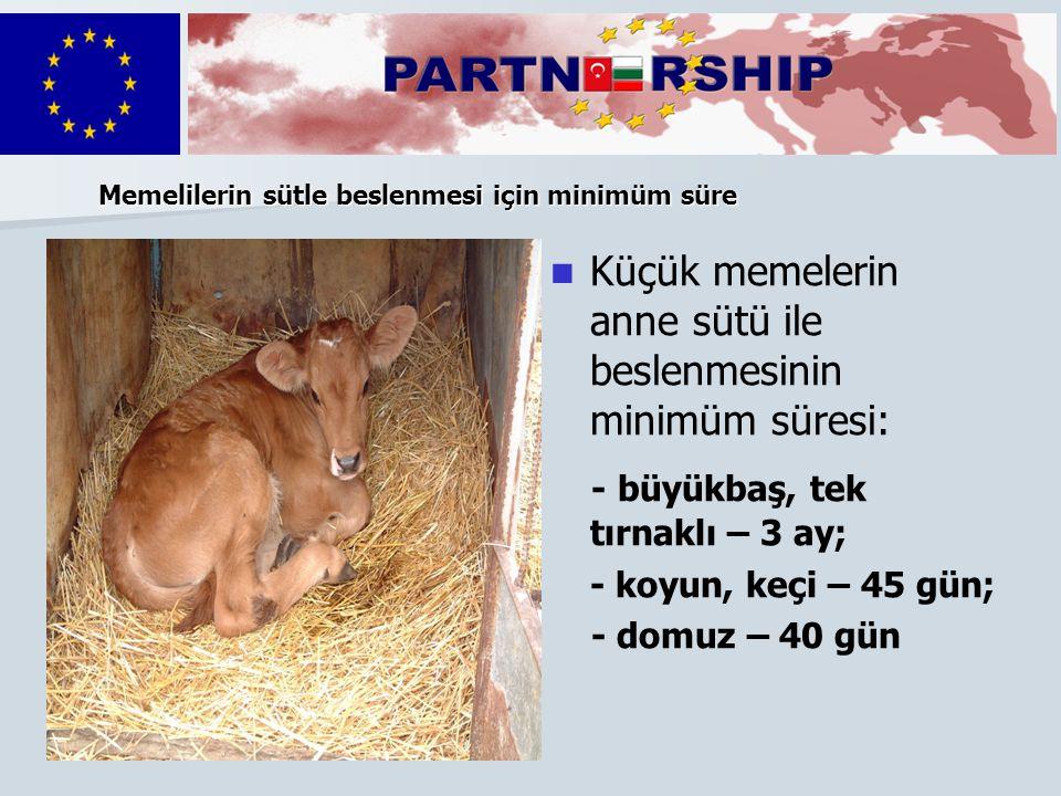 Küçük memelerin anne sütü ile beslenmesinin minimüm süresi: - büyükbaş, tek tırnaklı – 3 ay; - koyun, keçi – 45 gün; - domuz – 40 gün Memelilerin sütl