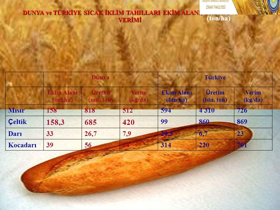 DUNYA ve TÜRKİYE SICAK İKLİM TAHILLARI EKİM ALANI, ÜRETİM ve VERİMİ (ton/ha) D ü nyaT ü rkiye Ekim Alanı (mil.ha) Ü retim (mil. ton) Verim (kg/da) Eki