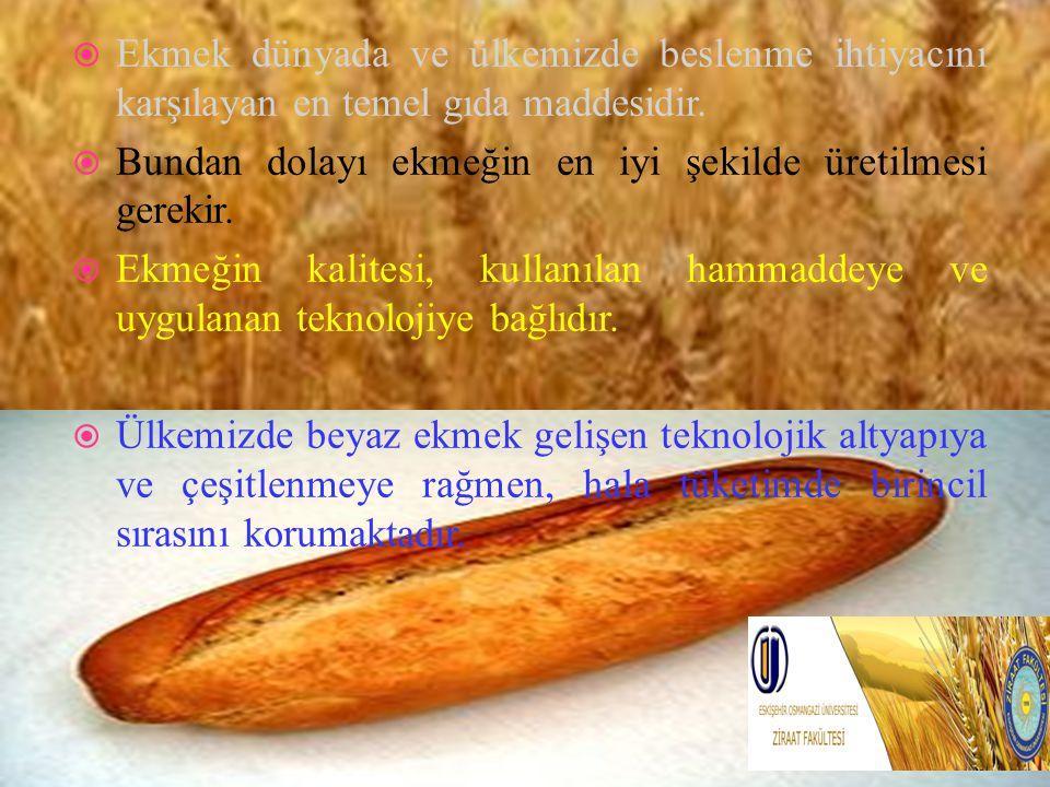  Ekmek dünyada ve ülkemizde beslenme ihtiyacını karşılayan en temel gıda maddesidir.  Bundan dolayı ekmeğin en iyi şekilde üretilmesi gerekir.  Ekm