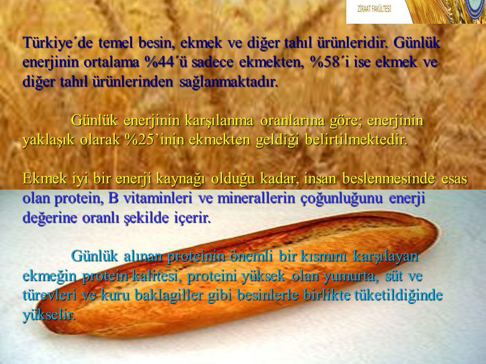 Türkiye´de temel besin, ekmek ve diğer tahıl ürünleridir. Günlük enerjinin ortalama %44´ü sadece ekmekten, %58´i ise ekmek ve diğer tahıl ürünlerinden