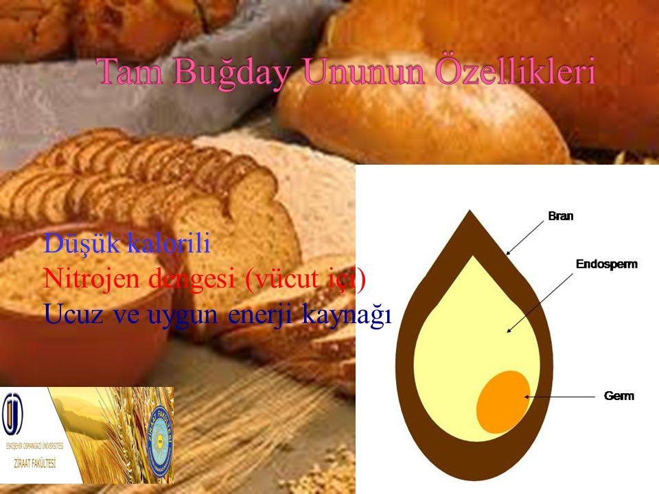 Düşük kalorili Nitrojen dengesi (vücut içi) Ucuz ve uygun enerji kaynağı