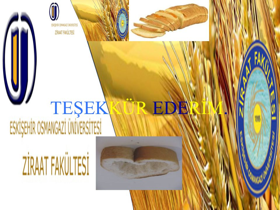 TEŞEKKÜR EDERİM.