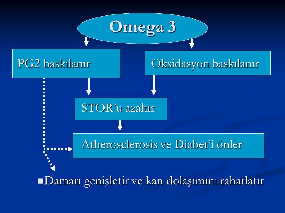 Omega 3 PG2 baskılanır Oksidasyon baskılanır PG2 baskılanır Oksidasyon baskılanır STOR'u azaltır STOR'u azaltır Atherosclerosis ve Diabet'i önler Athe
