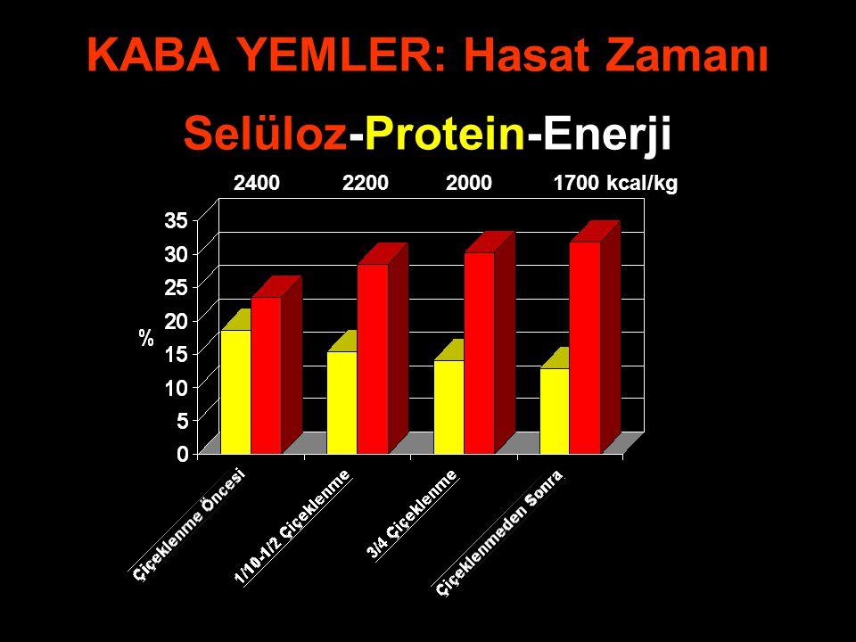 KABA YEMLER: Hasat Zamanı Selüloz-Protein-Enerji 2400 2200 2000 1700 kcal/kg