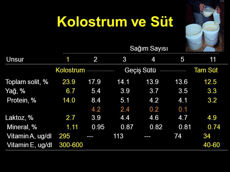 Kolostrum ve Süt Sağım Sayısı 1 Toplam solit, % Yağ, % Protein, % Unsur 23.9 6.7 14.0 Tam SütKolostrum Laktoz, % Mineral, % Vitamin A, ug/dl 2.7 1.11