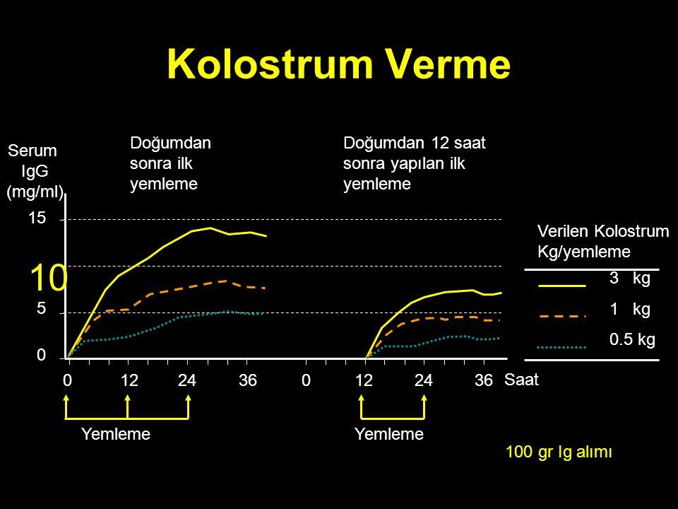 Kolostrum Verme 0122436 Saat 0122436 0 5 10 15 Serum IgG (mg/ml) 3 kg 1 kg 0.5 kg Verilen Kolostrum Kg/yemleme Yemleme Doğumdan sonra ilk yemleme Yeml