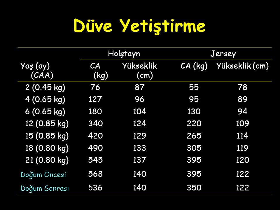 Holştayn Jersey Yaş (ay) (CAA) CA (kg) Yükseklik (cm) CA (kg)Yükseklik (cm) 2 (0.45 kg) 7687 5578 4 (0.65 kg) 12796 9589 6 (0.65 kg) 180104 13094 12 (