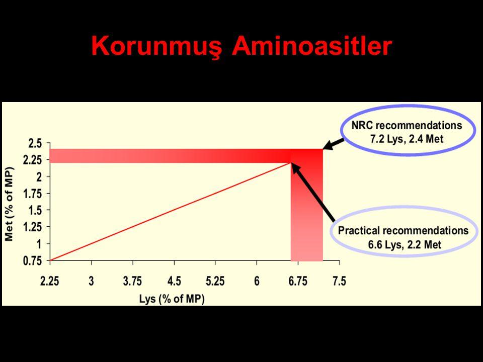 Korunmuş Aminoasitler