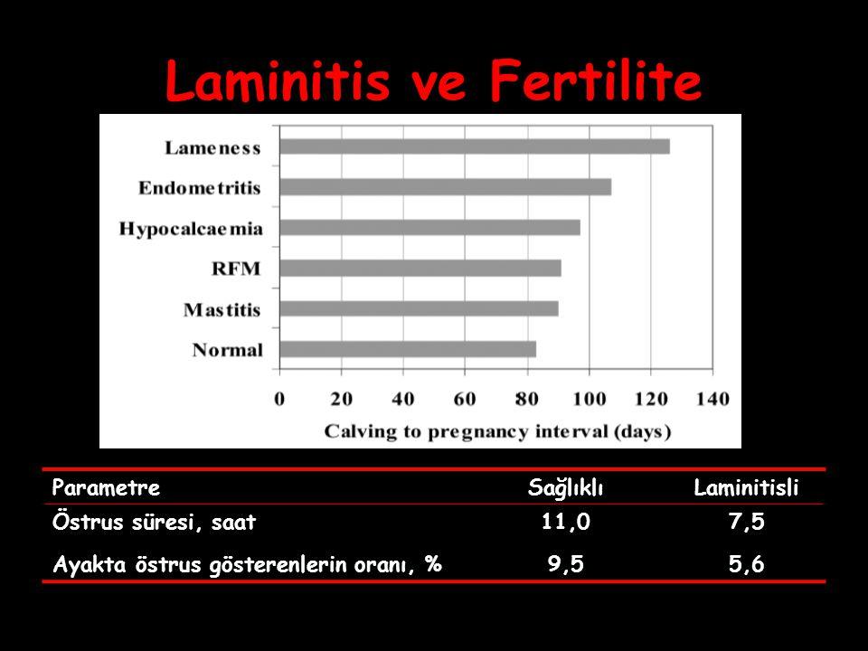 Laminitis ve Fertilite ParametreSağlıklıLaminitisli Östrus süresi, saat11,07,5 Ayakta östrus gösterenlerin oranı, %9,55,6