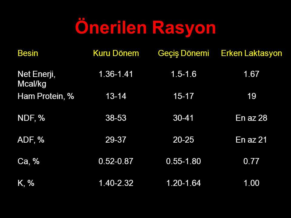 Önerilen Rasyon BesinKuru DönemGeçiş DönemiErken Laktasyon Net Enerji, Mcal/kg 1.36-1.411.5-1.61.67 Ham Protein, %13-1415-1719 NDF, %38-5330-41En az 2