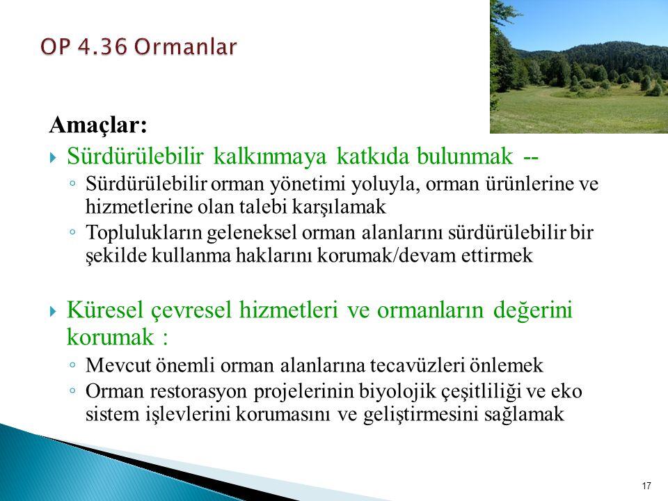 17 Amaçlar:  Sürdürülebilir kalkınmaya katkıda bulunmak -- ◦ Sürdürülebilir orman yönetimi yoluyla, orman ürünlerine ve hizmetlerine olan talebi karş