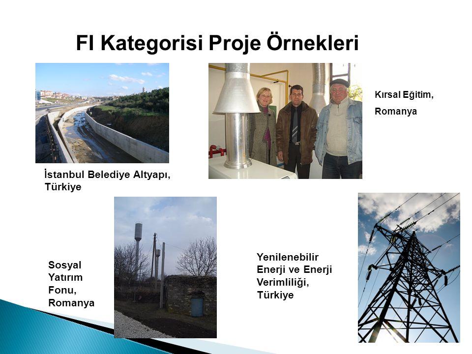 FI Kategorisi Proje Örnekleri İstanbul Belediye Altyapı, Türkiye Yenilenebilir Enerji ve Enerji Verimliliği, Türkiye Kırsal Eğitim, Romanya Sosyal Yatırım Fonu, Romanya