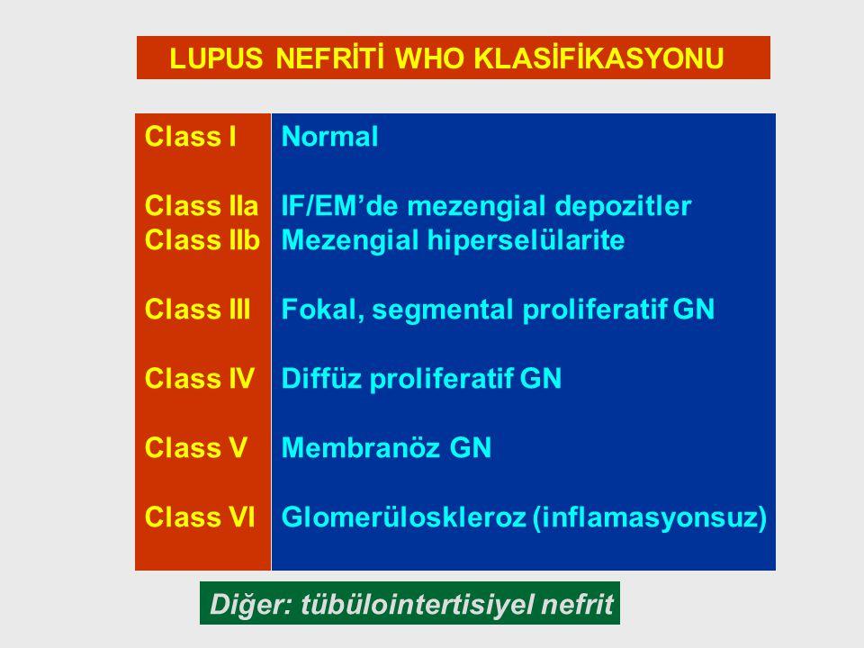 LUPUS NEFRİTİ WHO KLASİFİKASYONU Class I Class IIa Class IIb Class III Class IV Class V Class VI Normal IF/EM'de mezengial depozitler Mezengial hipers