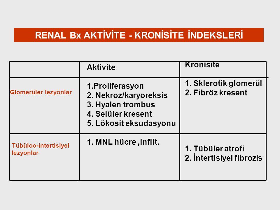 RENAL Bx AKTİVİTE - KRONİSİTE İNDEKSLERİ Aktivite 1.Proliferasyon 2. Nekroz/karyoreksis 3. Hyalen trombus 4. Selüler kresent 5. Lökosit eksudasyonu 1.