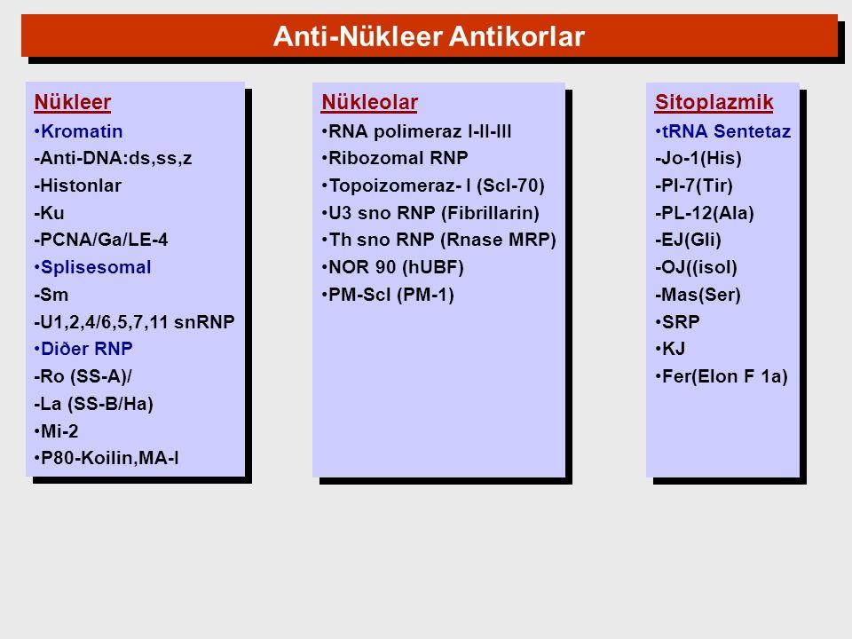 Nükleer Kromatin -Anti-DNA:ds,ss,z -Histonlar -Ku -PCNA/Ga/LE-4 Splisesomal -Sm -U1,2,4/6,5,7,11 snRNP Diðer RNP -Ro (SS-A)/ -La (SS-B/Ha) Mi-2 P80-Ko