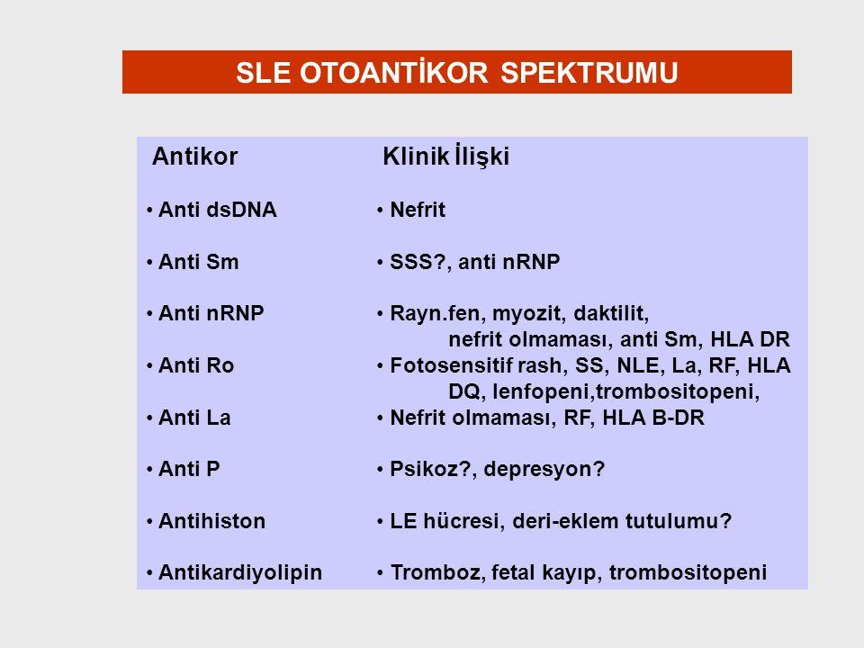 SLE OTOANTİKOR SPEKTRUMU Antikor Anti dsDNA Anti Sm Anti nRNP Anti Ro Anti La Anti P Antihiston Antikardiyolipin Klinik İlişki Nefrit SSS?, anti nRNP